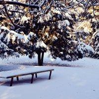 Зима :: Надежда Кульбацкая