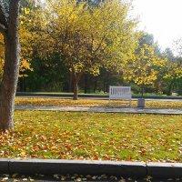золотая осень :: Яна Сюткина