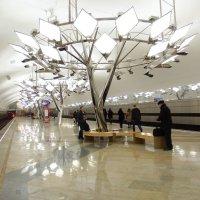 Подземный лес (метро Тропарёво) :: Alexander Borisovsky