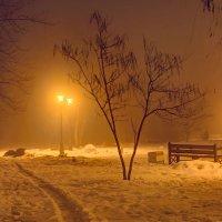 В парке ночью :: Константин Бобинский