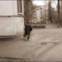 двор :: sv.kaschuk