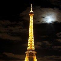 Парижанка :: Таня Фиалка