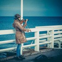 Мелодия скрипки под шум прибоя :: Игорь Вишняков