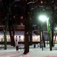 Кафе в зимнем парке... :: Тамара (st.tamara)
