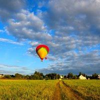 Воздушные шары на закате :: Ирина Н