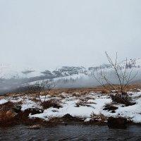 Туманная лощина :: Михаил Лобов (drakonmick)