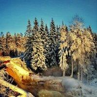 зимняя сказка :: Ольга Cоломатина