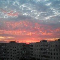 """еще """"живой"""" восточный :: Денис/Алина Крылов(а)"""