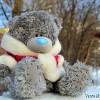 Мишку бросила хозяйка... :: Вероника Подрезова