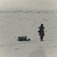 Про пейзаж и макросъемку :: Сергей Еремин