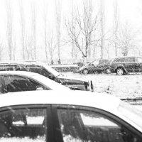 Снегопад :: Александр Бреза