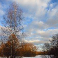 IMG_1617 - Первый день февраля :: Андрей Лукьянов