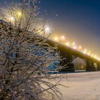 Старосамарский мост :: Владимир Клещёв