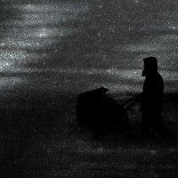 Сказки на ночь :: Игорь Лазуренко