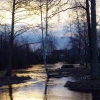 В местах, лучам открытым, Расплескалось солнце сыто! :: Лидия Симова