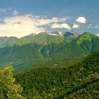 лето в горах :: Олег Кручинин