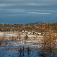жаркий январь :: зоя полянская