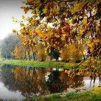Осень... Советск... :: Natalisa Sokolets