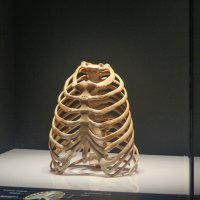 "Выставка ""ТАйны тела"" :: Елена Шахова"