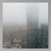 Торонто в тумане :: Виктория Михайлова