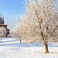 Всюду белое раздолье, чистота, как Бога Храм! :: Ирина Данилова