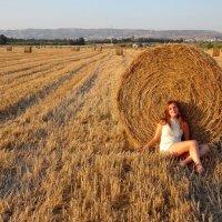 В полях на Кипре близ Пафоса... :: Андрей