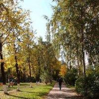 Осень :: Alexander Borisovsky