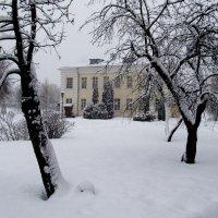 Снегопад начала февраля :: Николай Дони