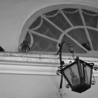 Ярославские голуби :: Юрий Бобылев