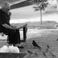 ... сколько  схожести в нас... :: Валерия  Полещикова