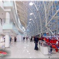 Ледовый дворец «Большой» :: СветЛана D