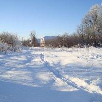 по белу снегу побегу... :: Галина Филоросс