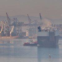 морозное утро в порту :: Ingwar