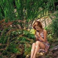 Краски лета.. :: Vitaly Shokhan