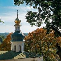 Купол Ильинской церкви :: Андрий Майковский