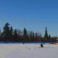 Рыбакам мороз нипочем! :: Вера Андреева