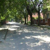 Улица   Марийки  Пидгирянки  в  Ивано - Франковске :: Андрей  Васильевич Коляскин