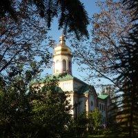 Свято-Троицкий Храм :: Lyudmila Pendelya
