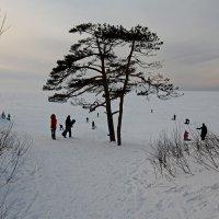 Северодвинск. У белого моря :: Владимир Шибинский