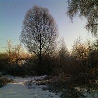 Зимнее караоке. :: Ольга Кривых