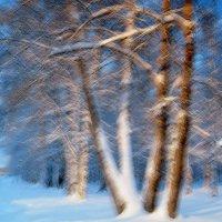 зимний вечер :: Александр Корчемный