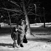 Вьюгой снега намело, всё вокруг белым-бело… :: Ирина Данилова