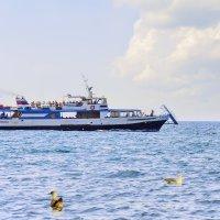 Морская прогулка :: Lidiya Gaskarova