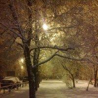 белым-бело... :: Галина R...
