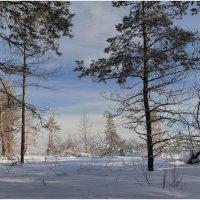 Зимняя сказка 3 :: generalov545