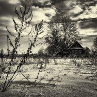 Зима в деревне :: Андрей Зайцев
