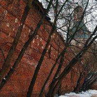 Симонов монастырь. :: Владимир Болдырев