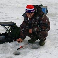 Рыбалка пуще неволи... :: Михаил Лобов (drakonmick)