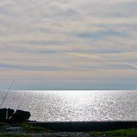 Белое озеро :: Galina