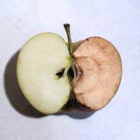 Время беспощадно к яблокам :: Екатерина Погребная